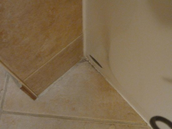 Kitchener Inn and Suites: another corner...by the tub