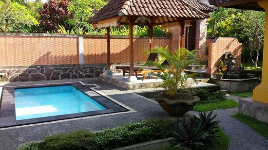 Bali Breeze Bungalows: Green House Pool & Garden Area