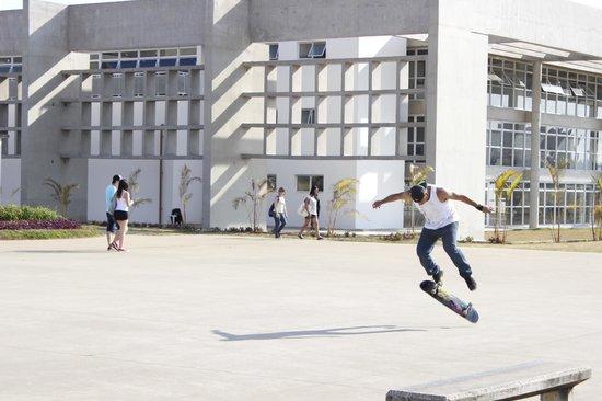 Villa Lobos Park: skatistas no parque