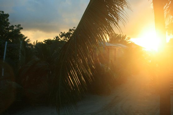 Colinda Cabanas: View from porch during sunrise.