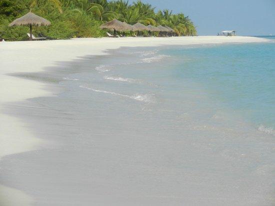 Kihaa Maldives : Lagoon Beach