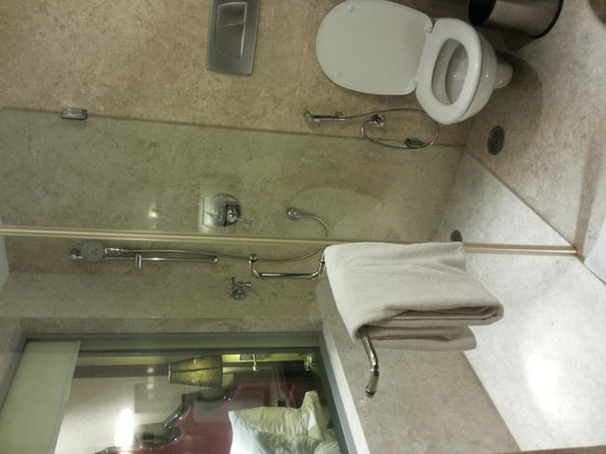 St Mark's Hotel: Shower area, elec blinds to close off view to/from sleeping area