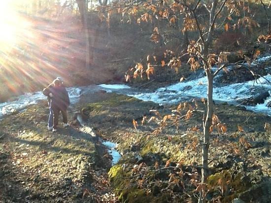 Wyndham Shawnee Village Resort : Buttermilk falls near the place to check in.