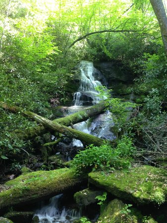 The Mountain Retreat and Learning Center : Abe's Creek - a hiking trail on-site