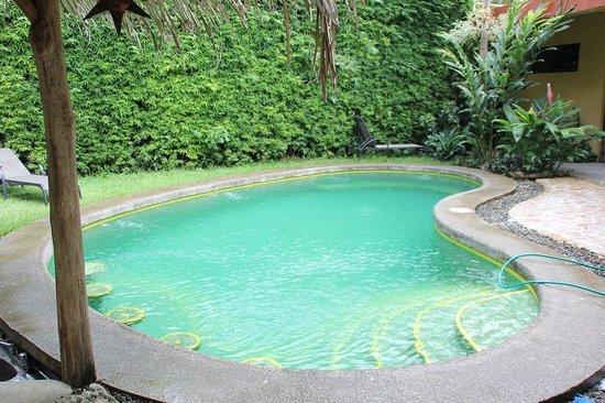 Hotel Luz de Luna: la piscina