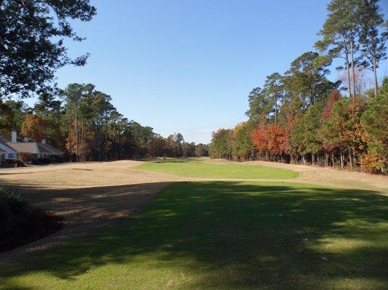 Wachesaw Plantantion East Golf Club: SC-WACHESAW_EAST-2