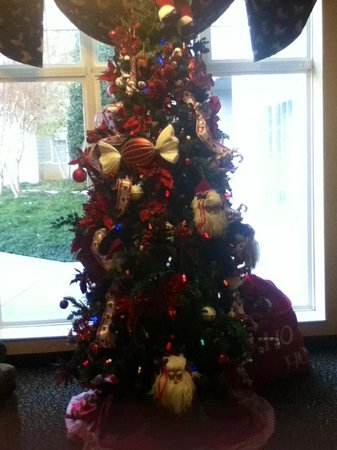MainStay Suites : Christmas tree