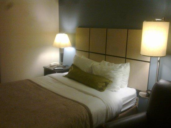 Candlewood Suites Phoenix : Bed