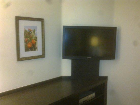 Candlewood Suites Phoenix : Television