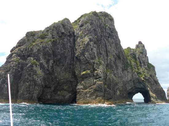 Fullers GreatSights Bay of Islands Day Tours : The Hole in the Rock
