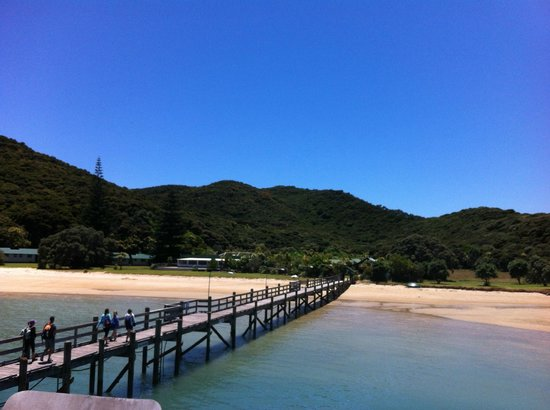 Fullers GreatSights Bay of Islands Day Tours : Bay