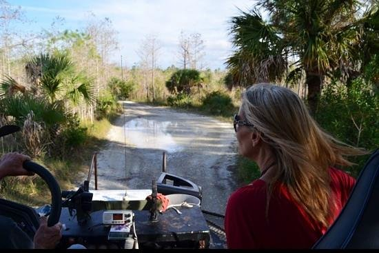 Captain Steve's Swamp Buggy Adventures: One trip is not enough!