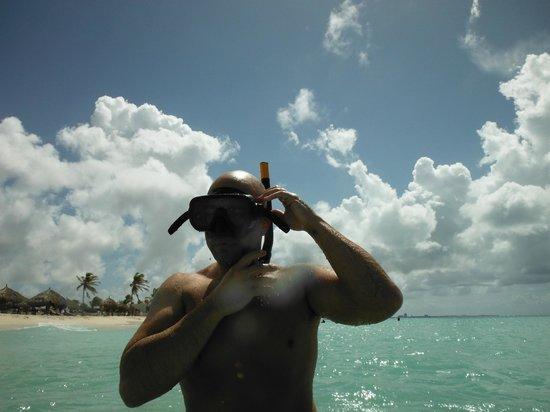 Boardwalk Hotel Aruba : snorkle