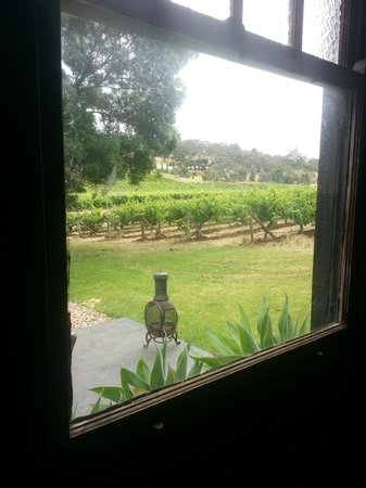 McLaren Vale, Avustralya: viewing the vinyard