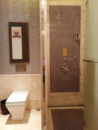 Sofitel Wanda Beijing: bathroom with rain shower