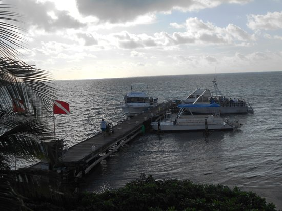 Compass Point Dive Resort: Boat Doc