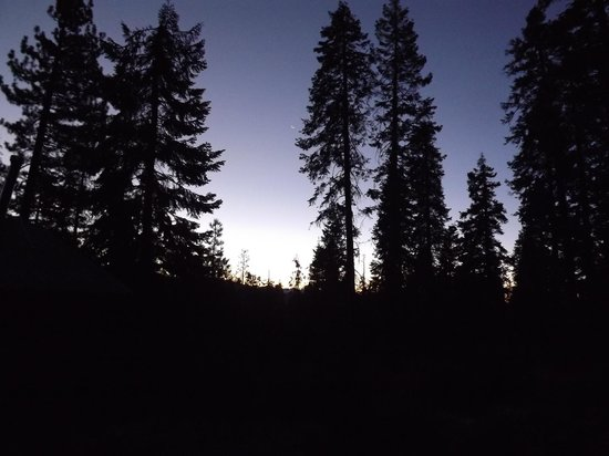 Montecito Sequoia Lodge: daybreak at Montecito Lodge