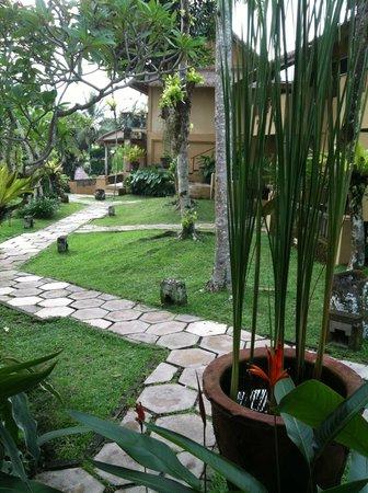 Wapa di Ume Resort and Spa: view from villa
