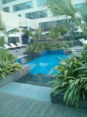 JW Marriott Hotel New Delhi Aerocity: Pool