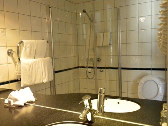 Scandic Victoria: Bathroom