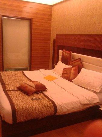 Hotel Classic Chandigarh : delux room