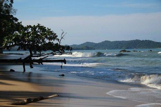 Khaolak Merlin Resort: The beach to the left