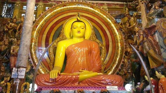 Isipathanaramaya Buddhist Temple: my trip