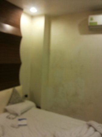 Hotel Vijan Palace: Dampness in the room