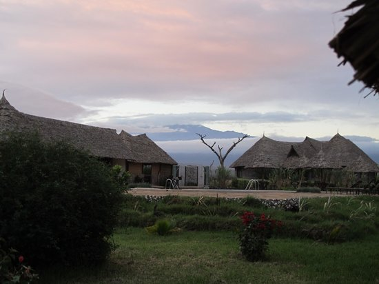 AA Lodge Amboseli : Swimming pool in the front and Kilimanjaro on the back