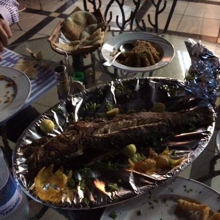 Red Sea Fish Restaurant : branzino alla griglia
