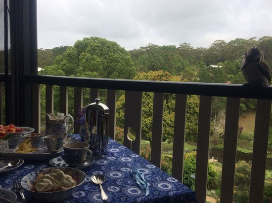 Allara Homestead Bed & Breakfast : Breakfast with a friendly & well behaved kookaburra surely was a memorable experience! Thank you