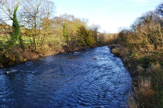 Ford House Farm: View of River Aire very close by