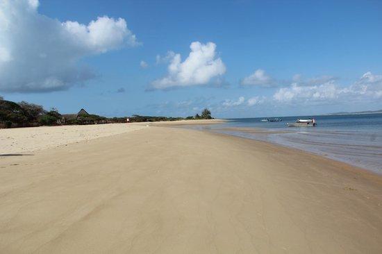 Diamond Beach Village: Walk on the beach