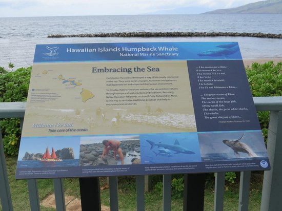 Hawaiian Islands Humpback Whale Sanctuary Visitor Center: Ko'ie'ie Fish Pond