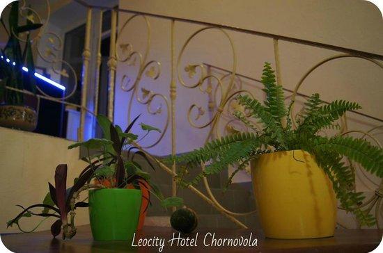 Hotel LeoCity Chornovola: Flower corner at the reception