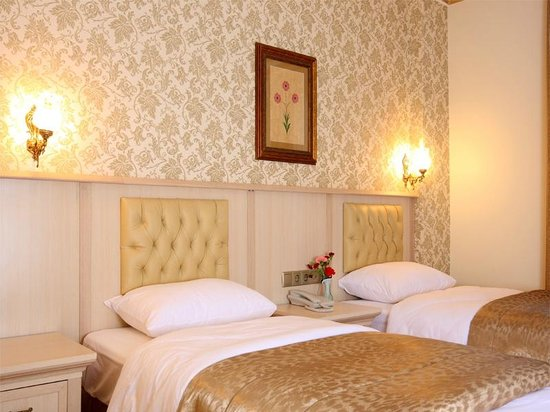 Aldem Hotel: TWİN  ROOM