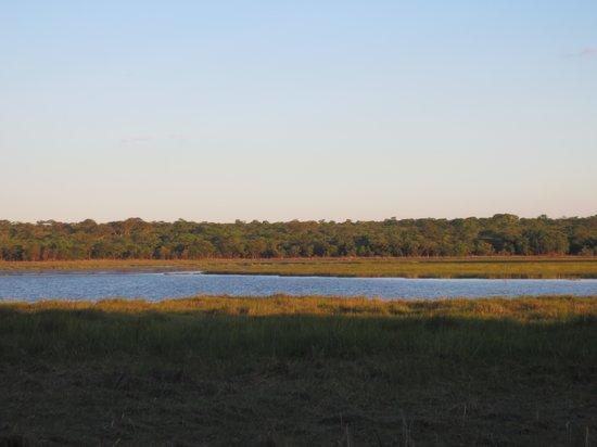 Wasa Lodge: View of Wasa Lake from the camp