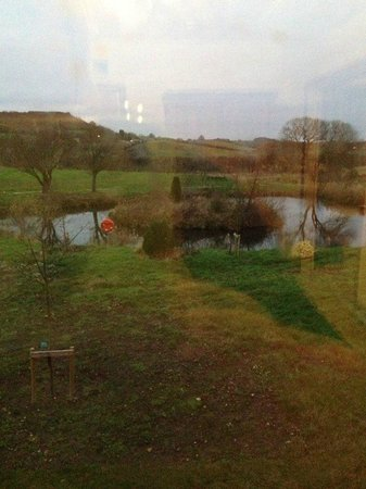 Ox Pasture Hall Hotel: view from the room