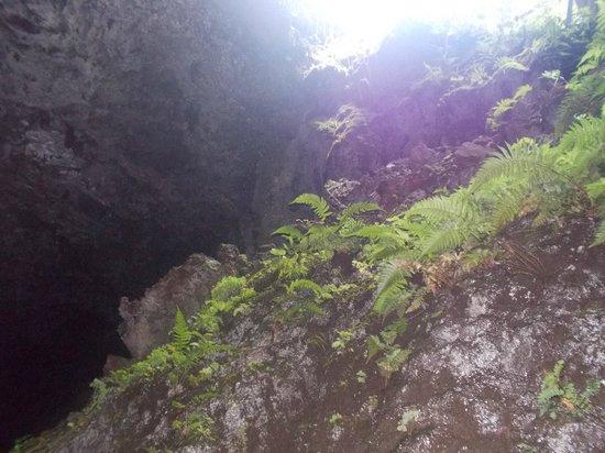Last Bit Of Light Before Total Darkness Picture Of Hana Lava Tubes Hana