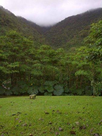 El Silencio Lodge & Spa: paisaje de la zona