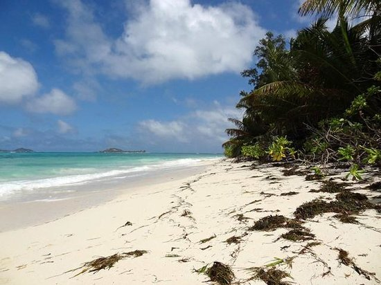 Ocean Jewels Resort: Strand
