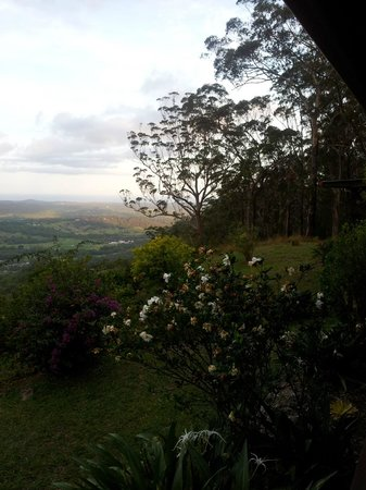 Koonyum Range Retreat Byron Bay: view4