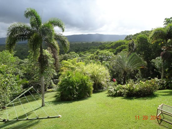 Daintree Manor B&B: A view from the veranda, looking south
