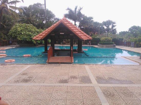 The Swimming pool cum Bar