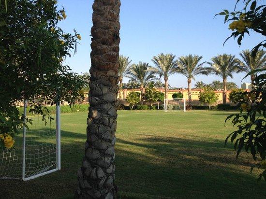 Sharm Grand Plaza: утро..