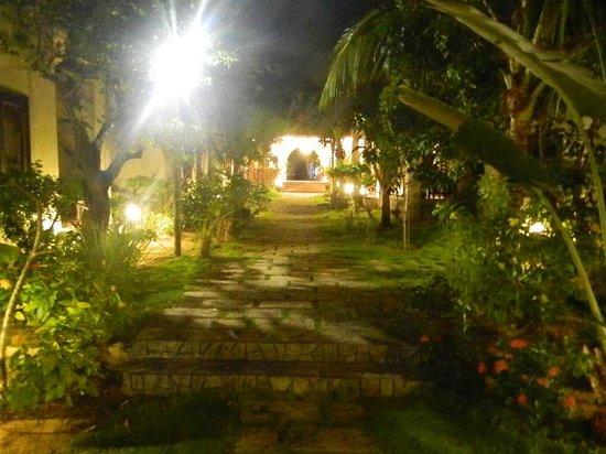Le Jardin des Thes: jardin de nuit