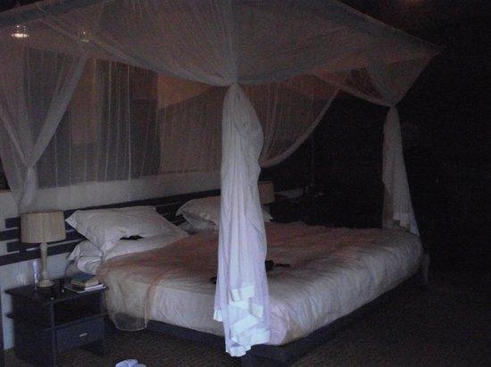 Thonga Beach Lodge : Our Room