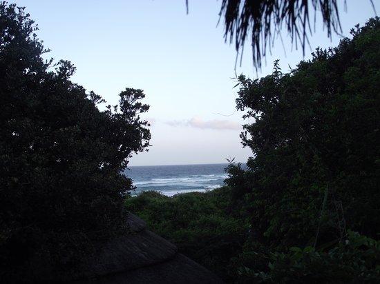 Thonga Beach Lodge : Room View