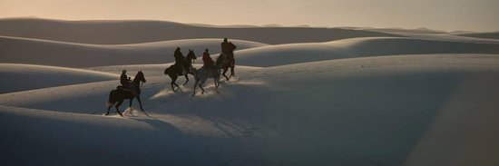 Acacia Riding Adventures: Cantering the Dunes at White Sands National Monument