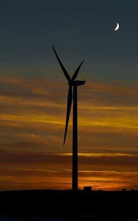 Muirhall Luxury Holiday Cottages: Muirhalls windfarm